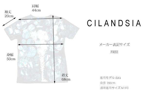 CILANDSIA(チランドシア) シルクスクリーンプリントTシャツ 円 メンズ レディース