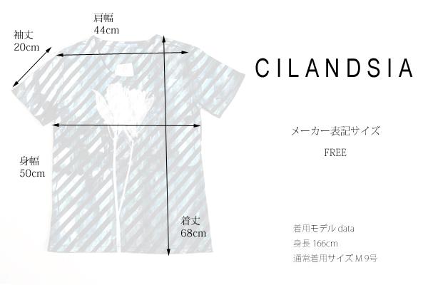 CILANDSIA(チランドシア) シルクスクリーンプリントTシャツ 線 メンズ レディース