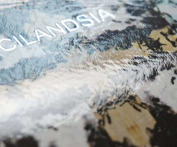 CILANDSIA(チランドシア) ラウンドファスナー長財布 ラミネート加工プリント牛革 |送料無料